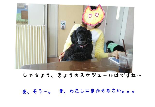 20140519_202459.jpg