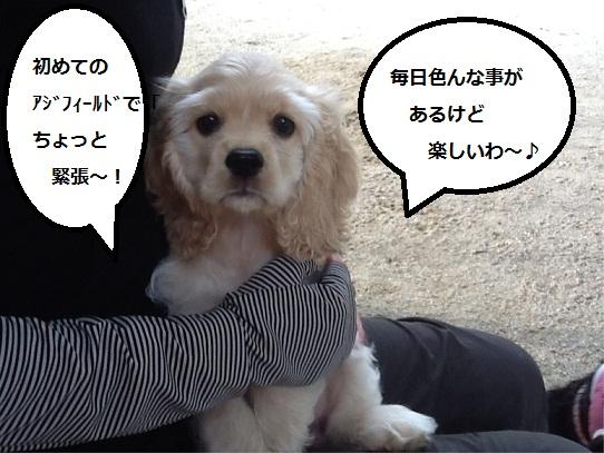 momoka2.jpg
